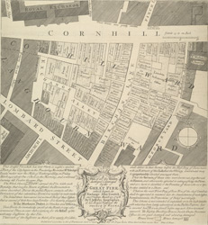 A plan of all the houses, destroyed & damaged by the great fire which begun in Exchange Alley Cornhill, on Friday March 25, 1748